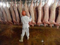 На Дальний Восток отправлена партия китайской свинины