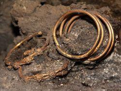 Украденные из музея древние кольца вернули по почте