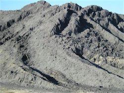 Ученые: золото можно добывать из угольной золы