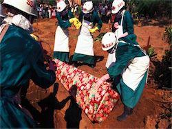 ВОЗ: число жертв Эболы составило 4950 человек