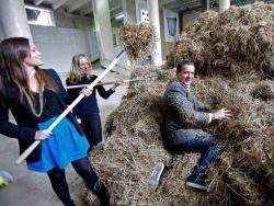 Художник двое суток искал иголку в стоге сена