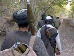 Путевка на джихад
